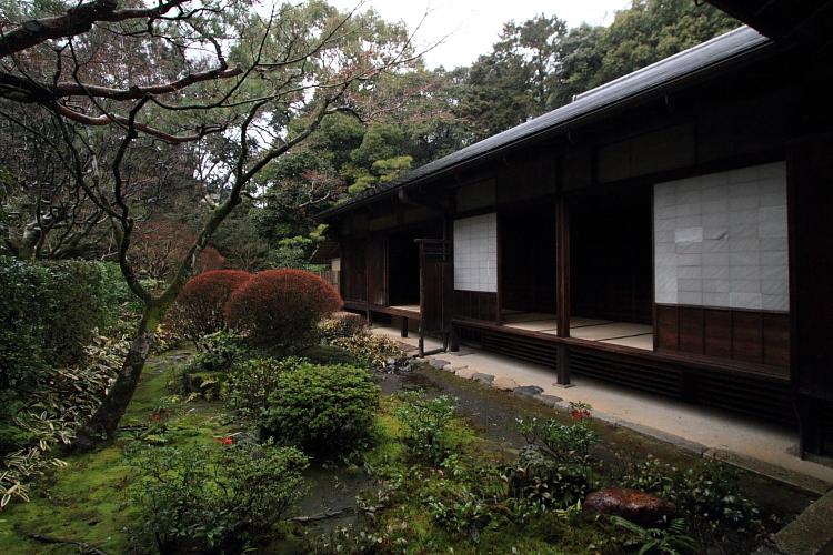 高桐院(大徳寺塔頭)_e0051888_22563776.jpg