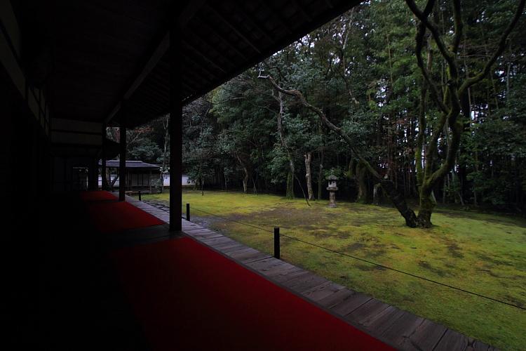 高桐院(大徳寺塔頭)_e0051888_2258257.jpg