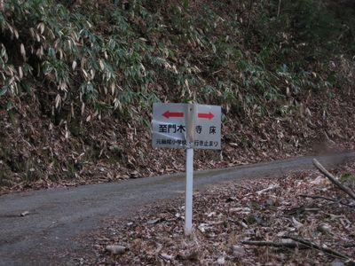 森の匂い_d0089494_1759546.jpg
