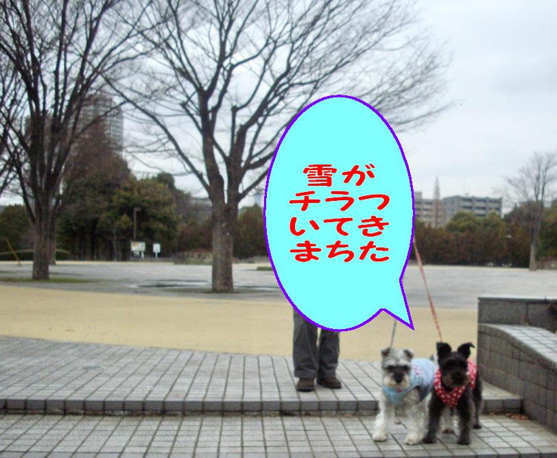 c0138198_10454438.jpg