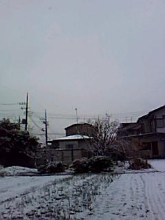 珍しい~雪の湘南...._b0137932_20255581.jpg