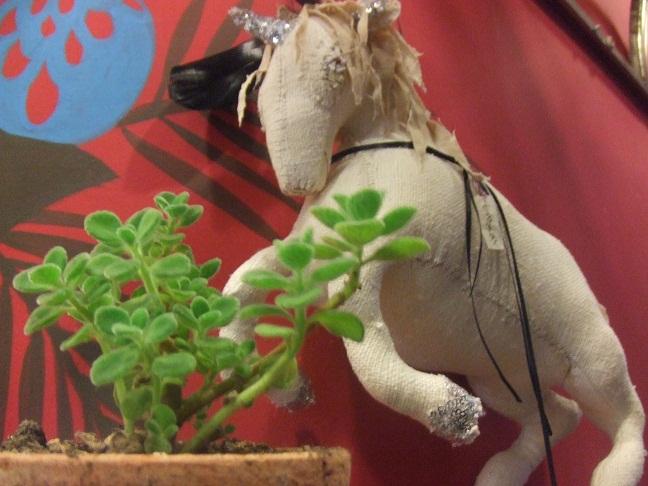 お店に新しい植物が仲間入りしました!_b0161661_17591385.jpg