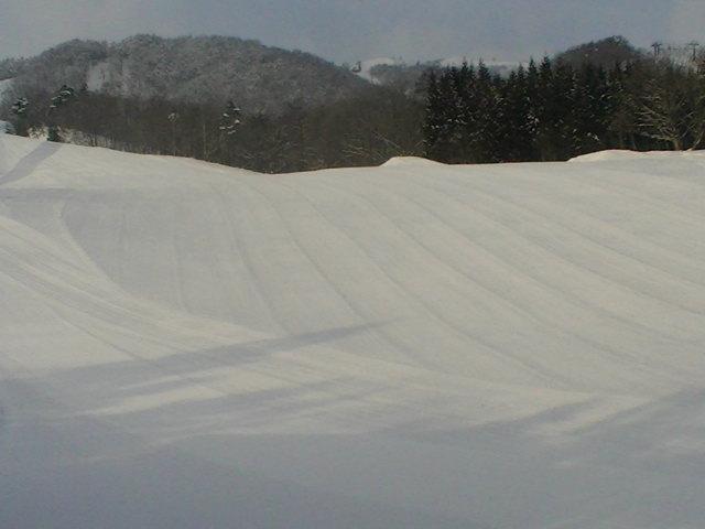 雪の予報だったけど晴れっっ_a0140584_9322497.jpg