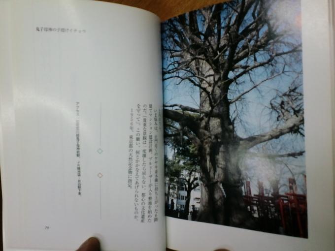 2010/02/19    せと_f0035084_18141687.jpg