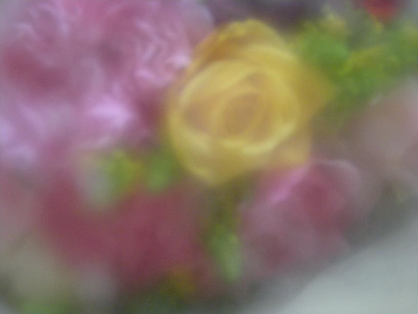 f0063887_0304659.jpg