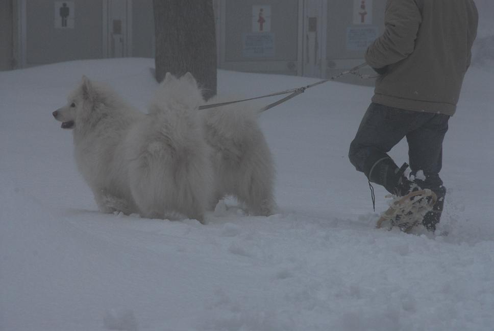 雪国ツアー♪ part2_a0049296_19564045.jpg
