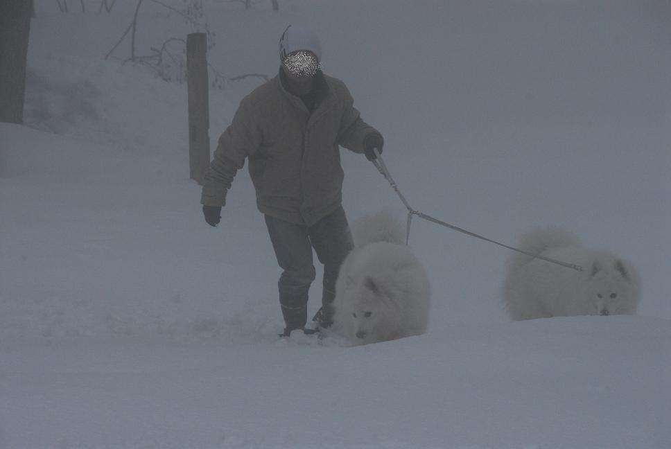 雪国ツアー♪ part2_a0049296_1956567.jpg