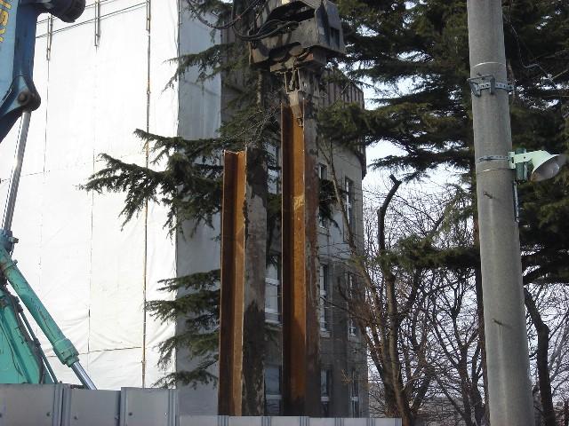 生きている樹木、死に行く文化_a0158797_23535799.jpg