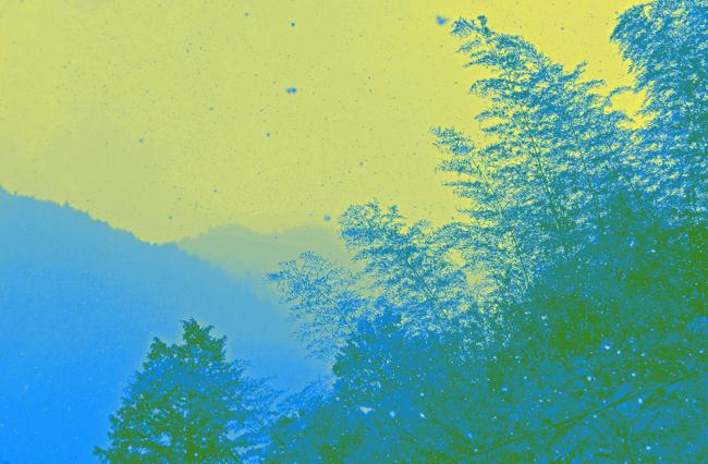 b0130112_153521.jpg