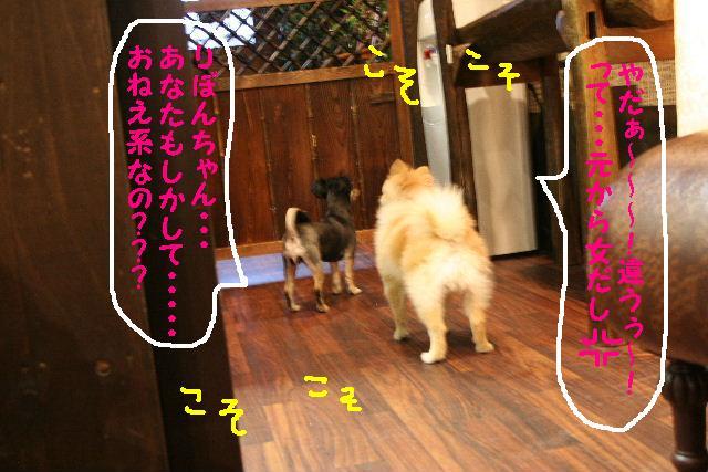 b0130018_1847633.jpg