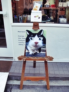 「Letters from Cats」展はじまりました!_b0189039_2335161.jpg
