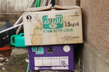 昭和の庭で_c0181457_3514975.jpg
