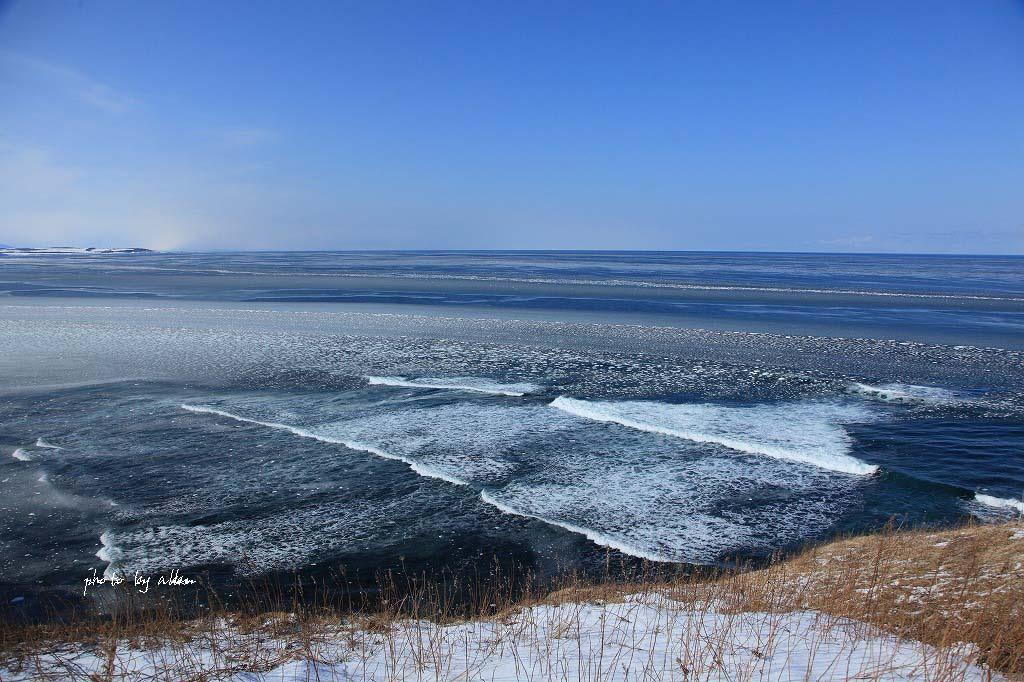 雪の降る中の流氷ノロッコ号より~_a0039860_1823386.jpg