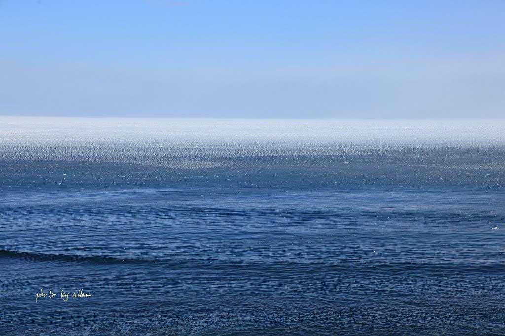 雪の降る中の流氷ノロッコ号より~_a0039860_1823497.jpg