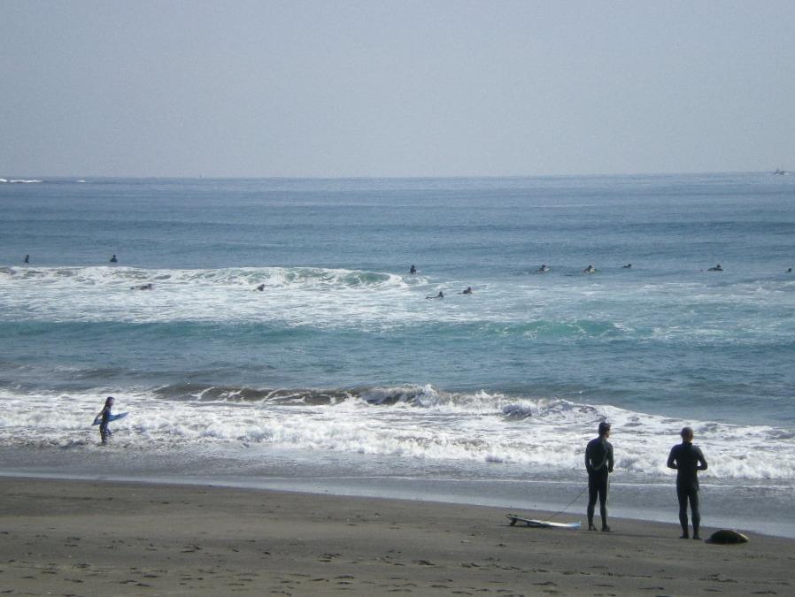 2010年2月20日(土)サーフィン日和?_f0060461_16142015.jpg