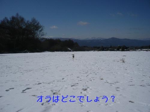 f0203369_2221337.jpg