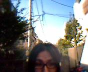 c0128573_1543220.jpg