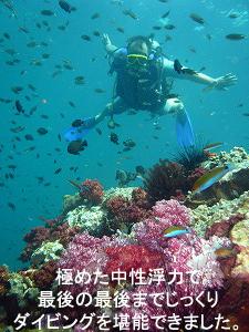 やっぱり海はいいですね ~祝☆アドバンス!~_f0144385_204916100.jpg