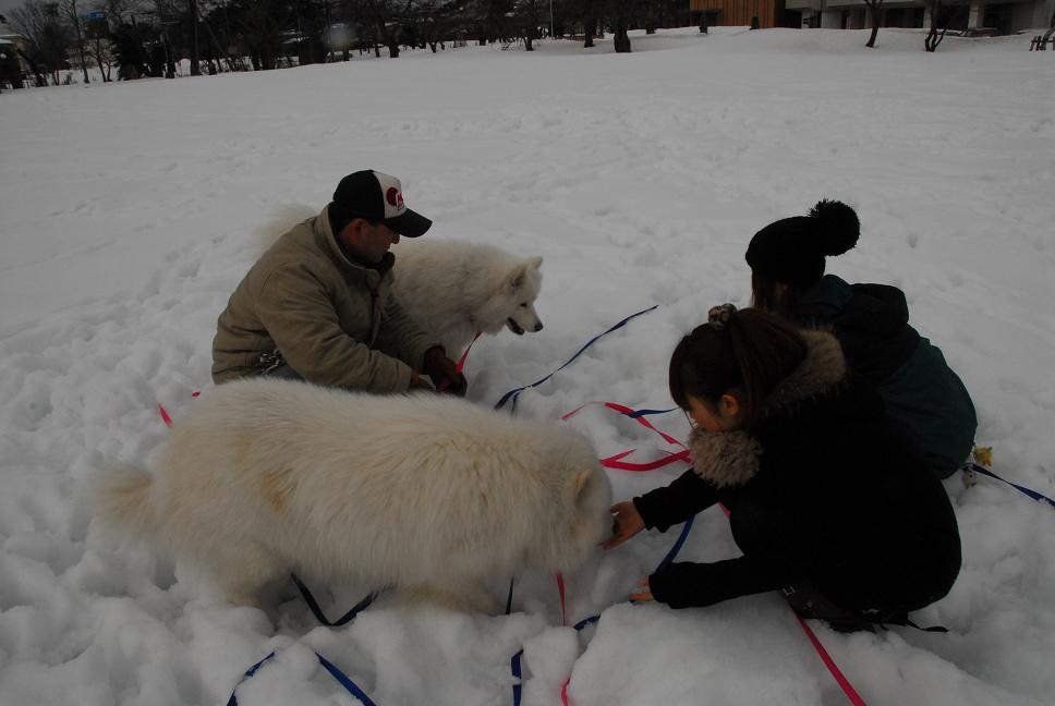 雪国ツアー♪ part3_a0049296_2045954.jpg
