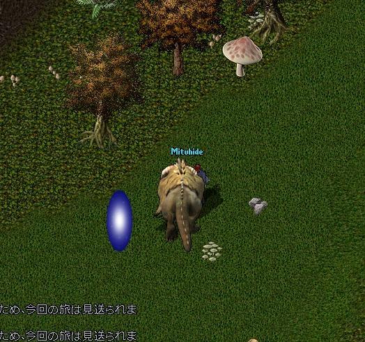 e0068900_2012631.jpg