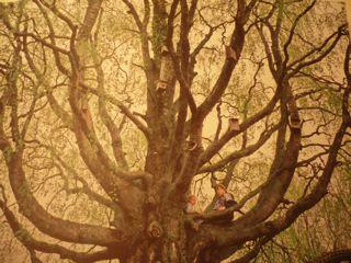 Tree People_c0203401_19211996.jpg