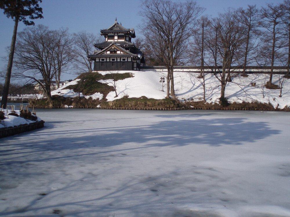 今年は大雪_e0087201_21581758.jpg
