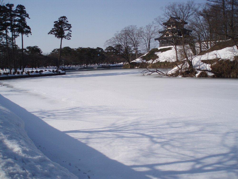今年は大雪_e0087201_2158981.jpg