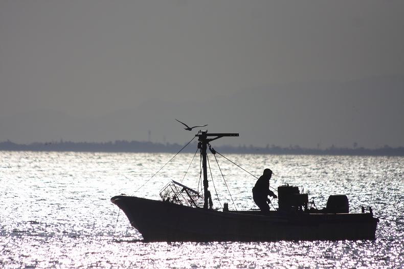 カモメと漁師_c0110922_1049379.jpg