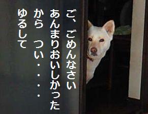 f0195543_22253135.jpg