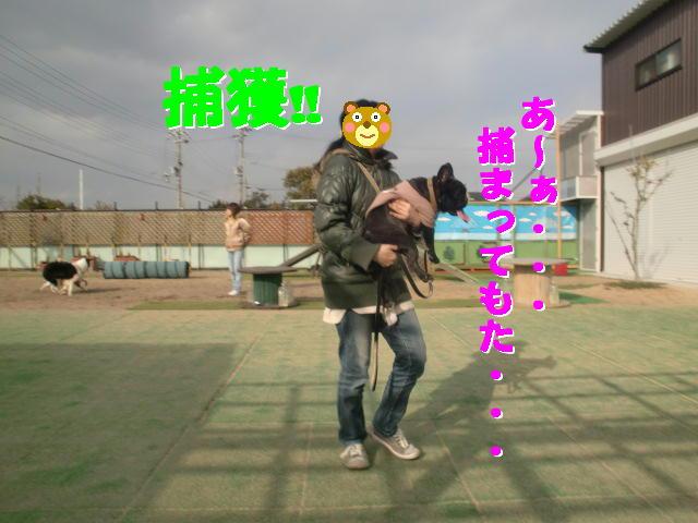 b0182763_1275850.jpg