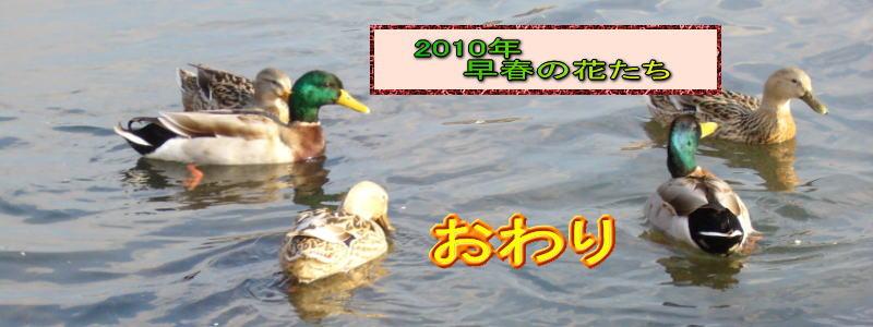 d0126573_234214.jpg