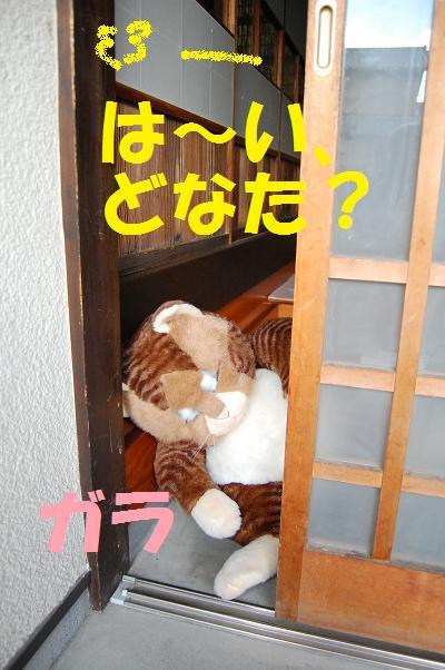 b0059978_18413468.jpg