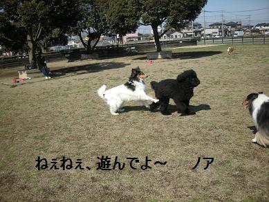 f0081100_1841335.jpg