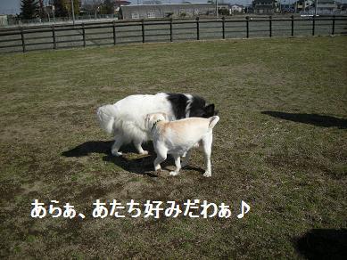 f0081100_18421872.jpg