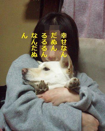 f0195543_22205138.jpg