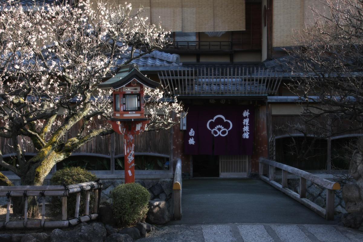京都 DE スナップ 5_f0021869_22305137.jpg