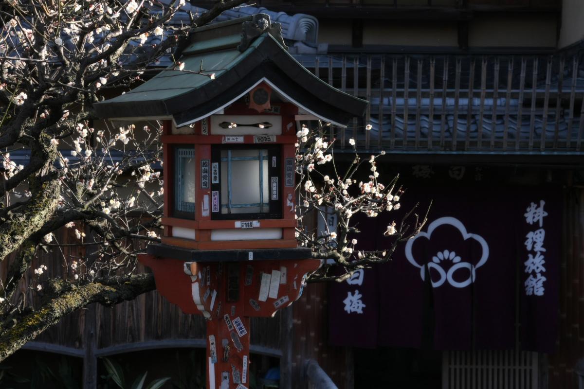 京都 DE スナップ 5_f0021869_22311573.jpg