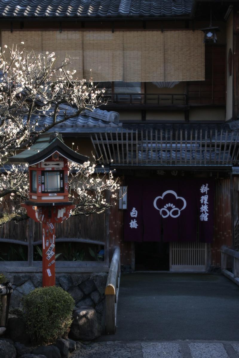 京都 DE スナップ 5_f0021869_2235369.jpg