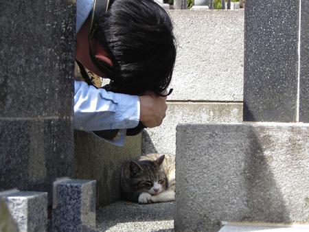 今日は猫の日、猫写真アップ!_e0171573_18411378.jpg
