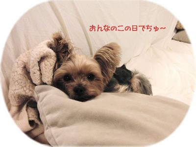 f0018384_218071.jpg