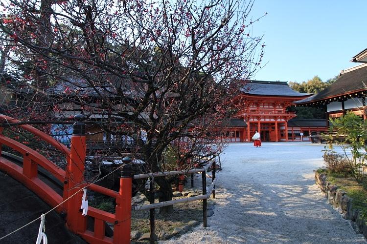 下鴨神社(賀茂御祖神社)_e0051888_22423534.jpg