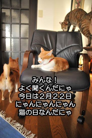 b0141397_1056225.jpg