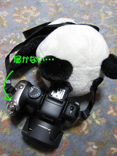 f0033598_2243389.jpg