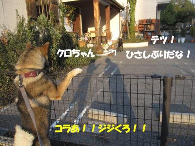 f0143123_2012899.jpg
