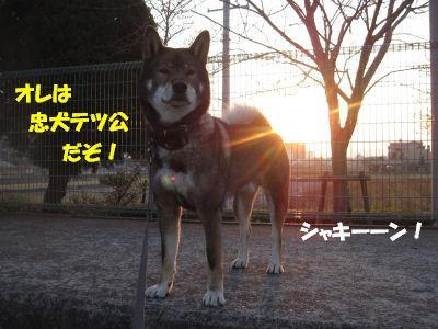 f0143123_20141998.jpg