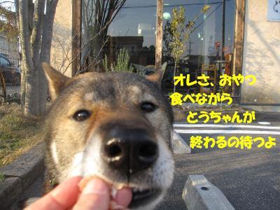 f0143123_208275.jpg
