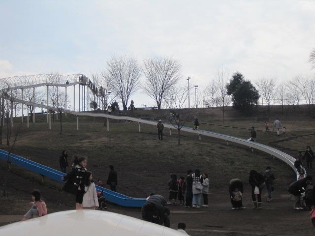 妹のお引越しとすごい楽しい滑り台(笑)_e0131324_22532330.jpg