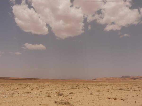 一会のPhotoback と 枯れ野の話 _a0042928_0211472.jpg