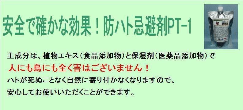 f0131929_14545293.jpg