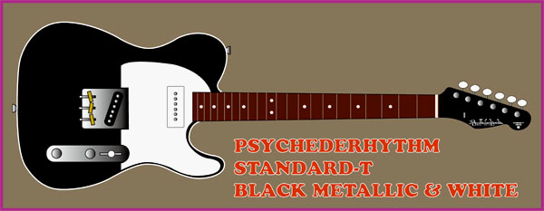 「BLACK METALLIC & WHITEのSTD-T」を製作します!!!!!_e0053731_20415633.jpg
